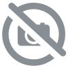 Boisson Orange BIO 33cl Galvanina